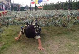 报名安徽夏令营后需要做哪些准备?