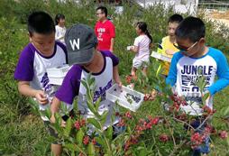 贵州哪里有适合7岁孩子参加的冬令营吗?