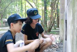 上海小学生暑假夏令营游玩多少钱?