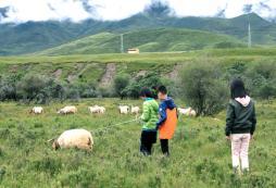 参加甘肃少年行2020暑假夏令营有哪些保障?