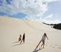 澳大利亚特色主题拓展1线-海豚岛海洋生态英语课程+成长感悟两周游学营